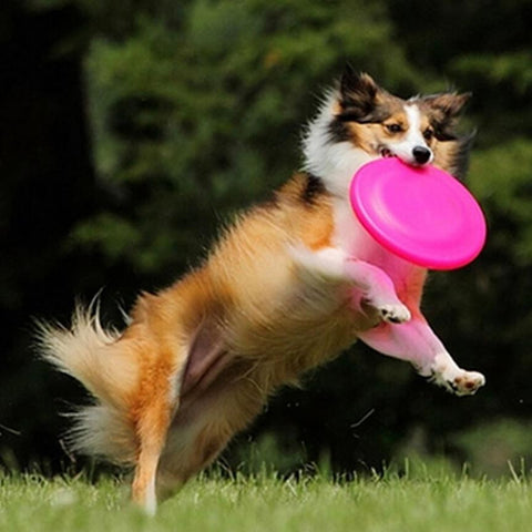 2016 New Pet Dogs toy Flying Disc Tooth Resistant Training Fetch Toys Play Frisbee products for dogs mascotas