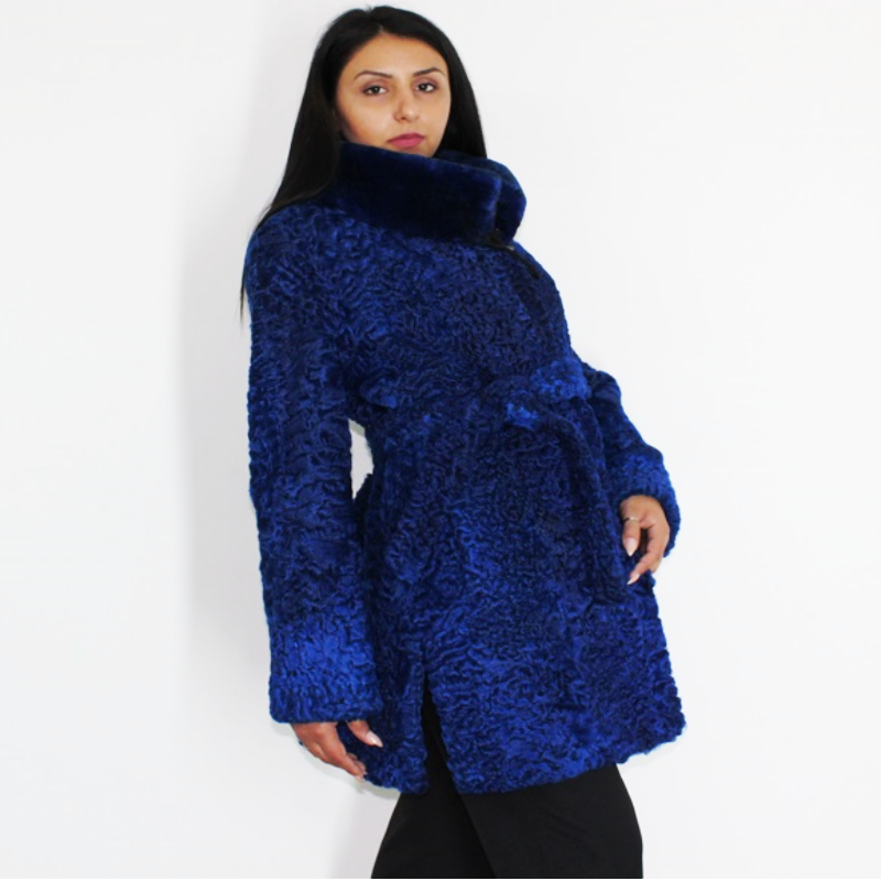Astrakhan Colored blue electric ¾ coat with beaver collar