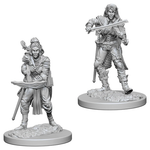 Pathfinder Battles Deep Cuts Unpainted Minis: W4 Female Elf Bard