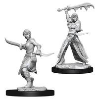 D&D Nolzur's Marvelous Unpainted Minis: W10 Female Human Rogue