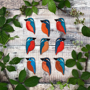 Fabric Kingfisher brooches