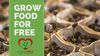 Grow Food For FREE Today 🍃