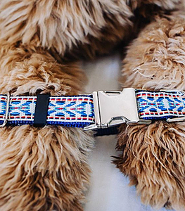 tribal dog collar