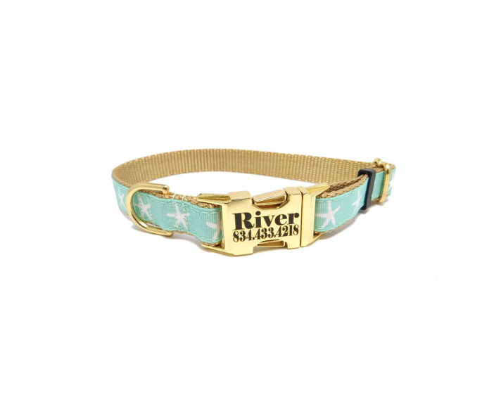 starfish dog collar 3.png