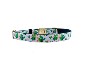 cactus flower dog collar 2.jpg