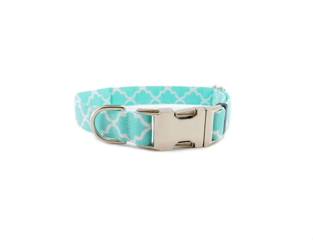 aqua quatrefoil dog collar