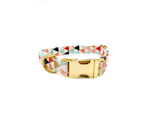 colorful triagnle dog collar 2.jpg