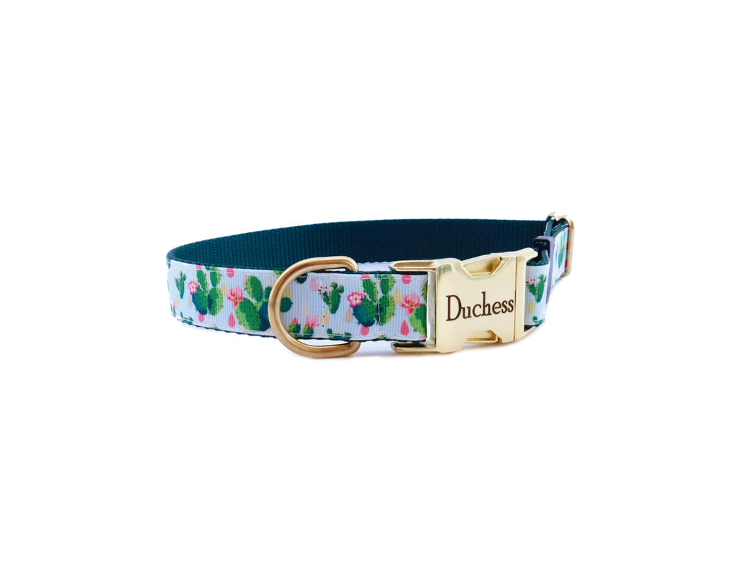 cactus flower dog collar 5.jpg