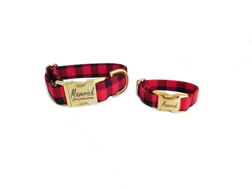 dog collar and bracelet