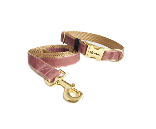 Velvet Dog Collar and Leash Set -Wide Version- Colonial Rose