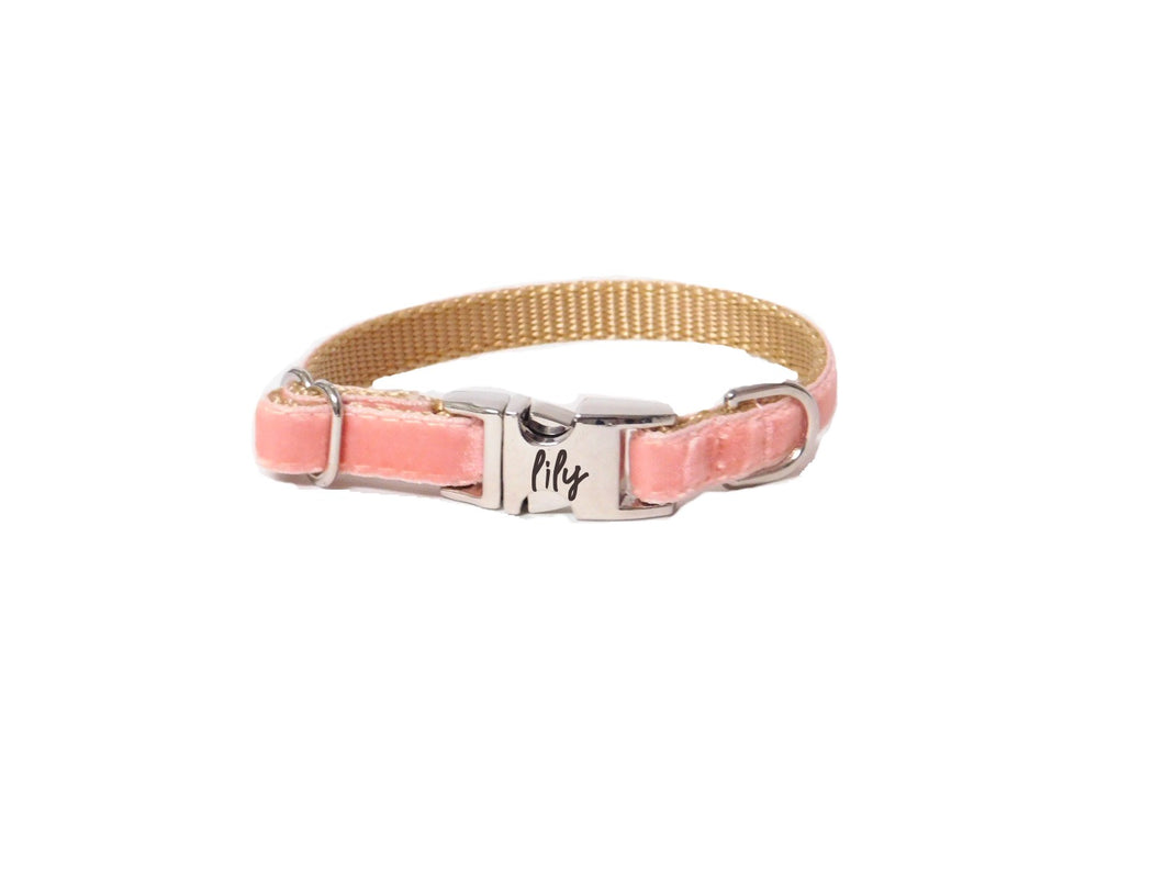 Dainty Velvet Collar in Coral