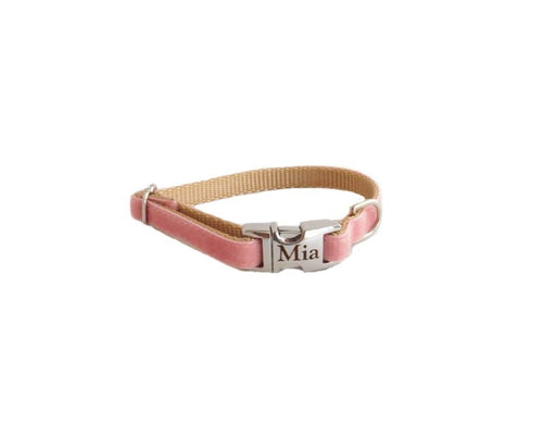 Dainty Velvet Collar in Dusty Rose