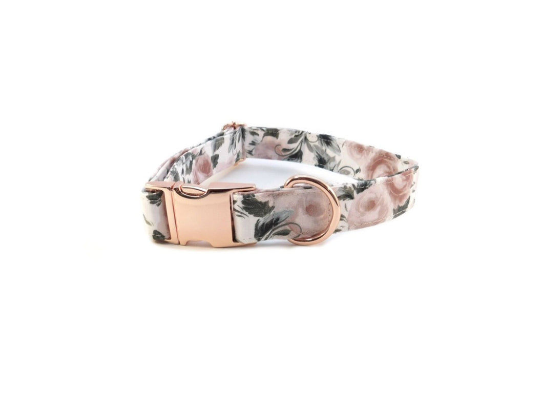 rose print dog collar