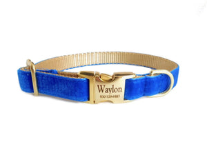 Velvet Personalized Dog Collar in Royal Blue