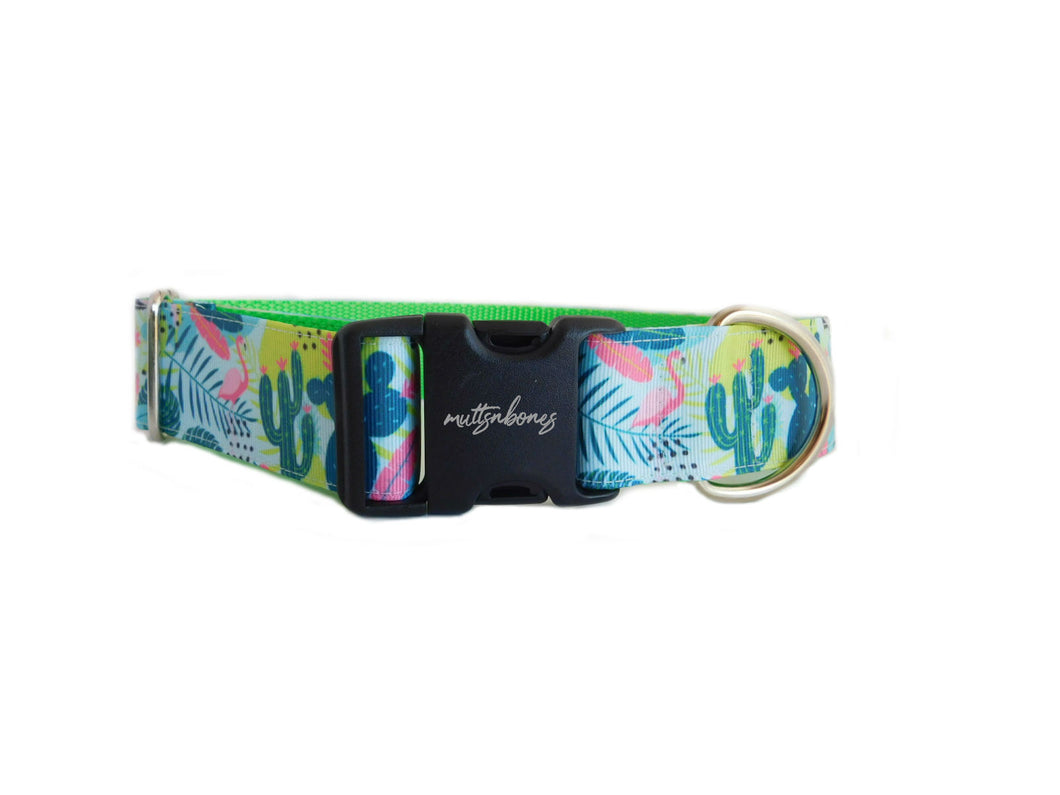 Wide Cactus Print Personalized Dog Collar -1.5