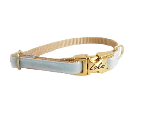Dainty Velvet Collar in Light Blue