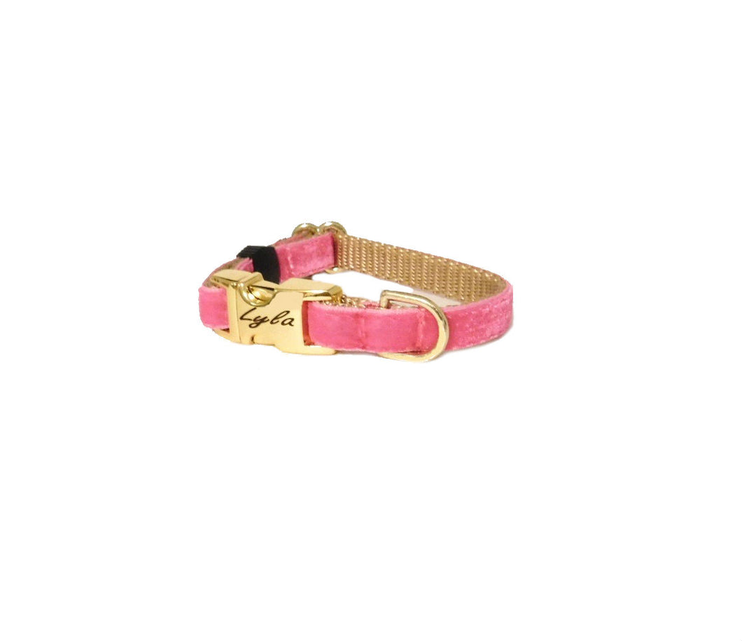 Velvet Personalized Puppy Collar in Shocking Pink