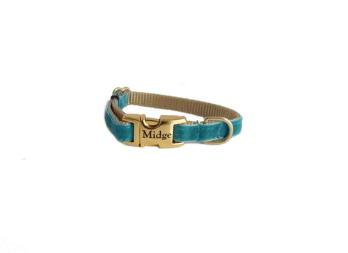 Dainty Velvet Collar in Teal