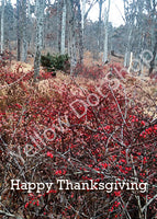 Thanksgiving Berries Card - 006