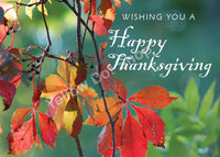 Thanksgiving card 001