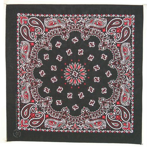 Cotton Bandanna - Black, Red, & White Paisley