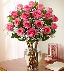 24 Pink Roses