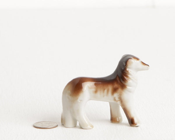Brown Afghan Hound at Lobster Bisque Vintage