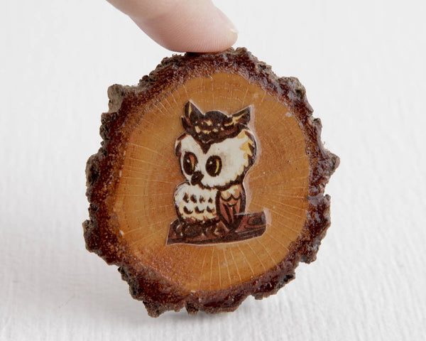Owl Tree Slice Magnet at Lobster Bisque Vintage