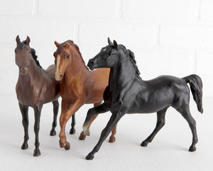 Breyer black beauty, american fucking griles images
