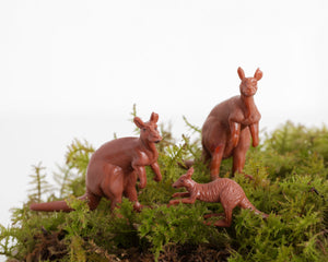 Trio of Kangaroos at Lobster Bisque Vintage