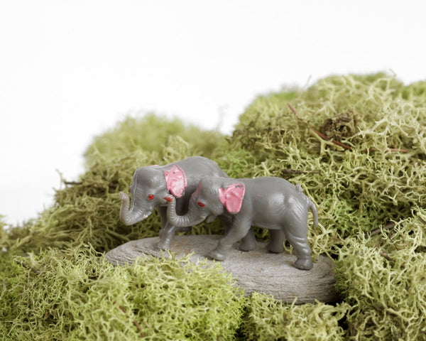 Tiny Elephant Pair at Lobster Bisque Vintage