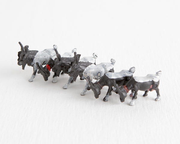 Herd of Six Black and White Goats at Lobster Bisque Vintage
