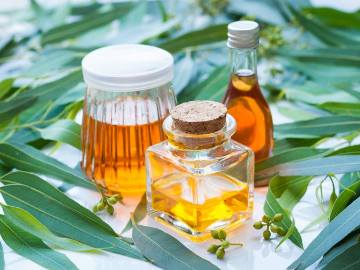 QUICK HEALTH TIPS: Benefits of eucalyptus oil.