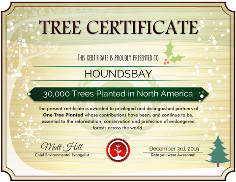 Houndsbay plants 30,000 trees in North America
