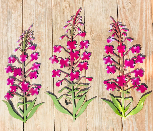 Trio of Alaska Fireweed