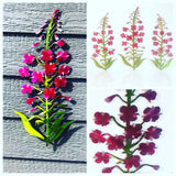 fireweed metal art