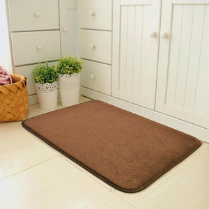 Magic Non Slip Door Mat