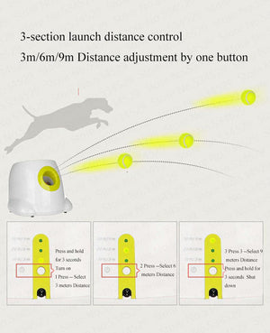 Pet Ball Launcher Automatic  (Balls Included)