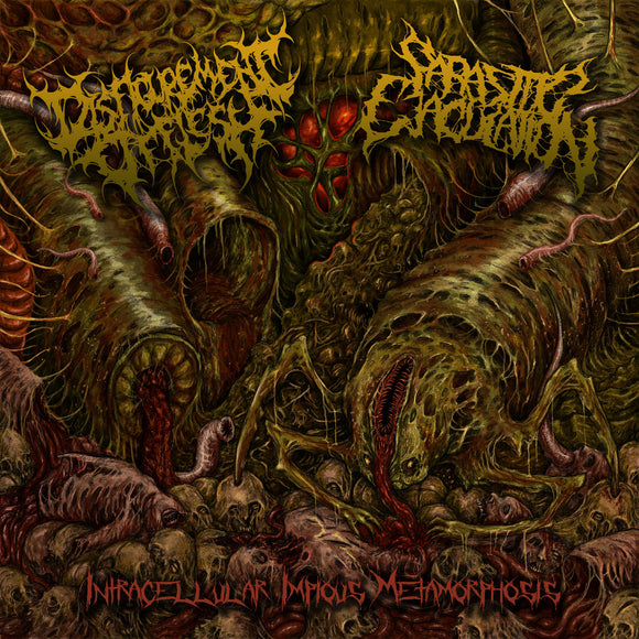 Disfigurement of Flesh / Parasitic Ejaculation -  Intracellular Impious Metamorphosis (Vinyl)