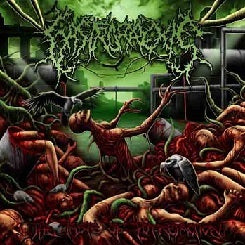 Gastrorrexis - The Tastes Of Putrefaction