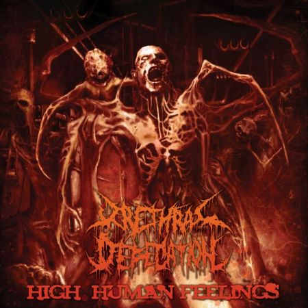 Urethral Defecation - High Human Feelings