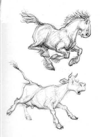 Horse and cow studies