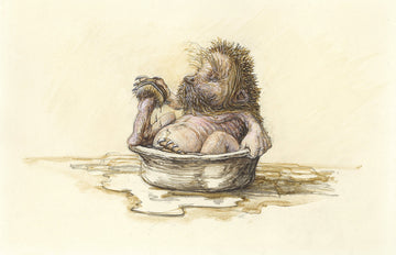 1 Hedgehog bathtime