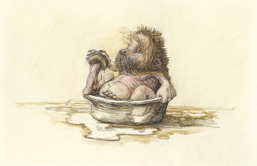 1b Hedgehog bathtime