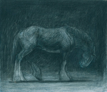 Night shadows (Heavy Horse)