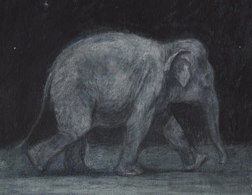 Print 1 - Night Elephant