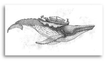Card 2 - Flying Humpback Whale