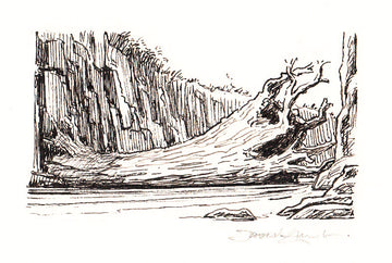Redwall Rakkety Tam - 'monster willow trunk' original art