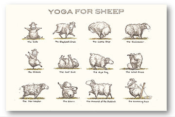 Card 1 - Yoga for Sheep