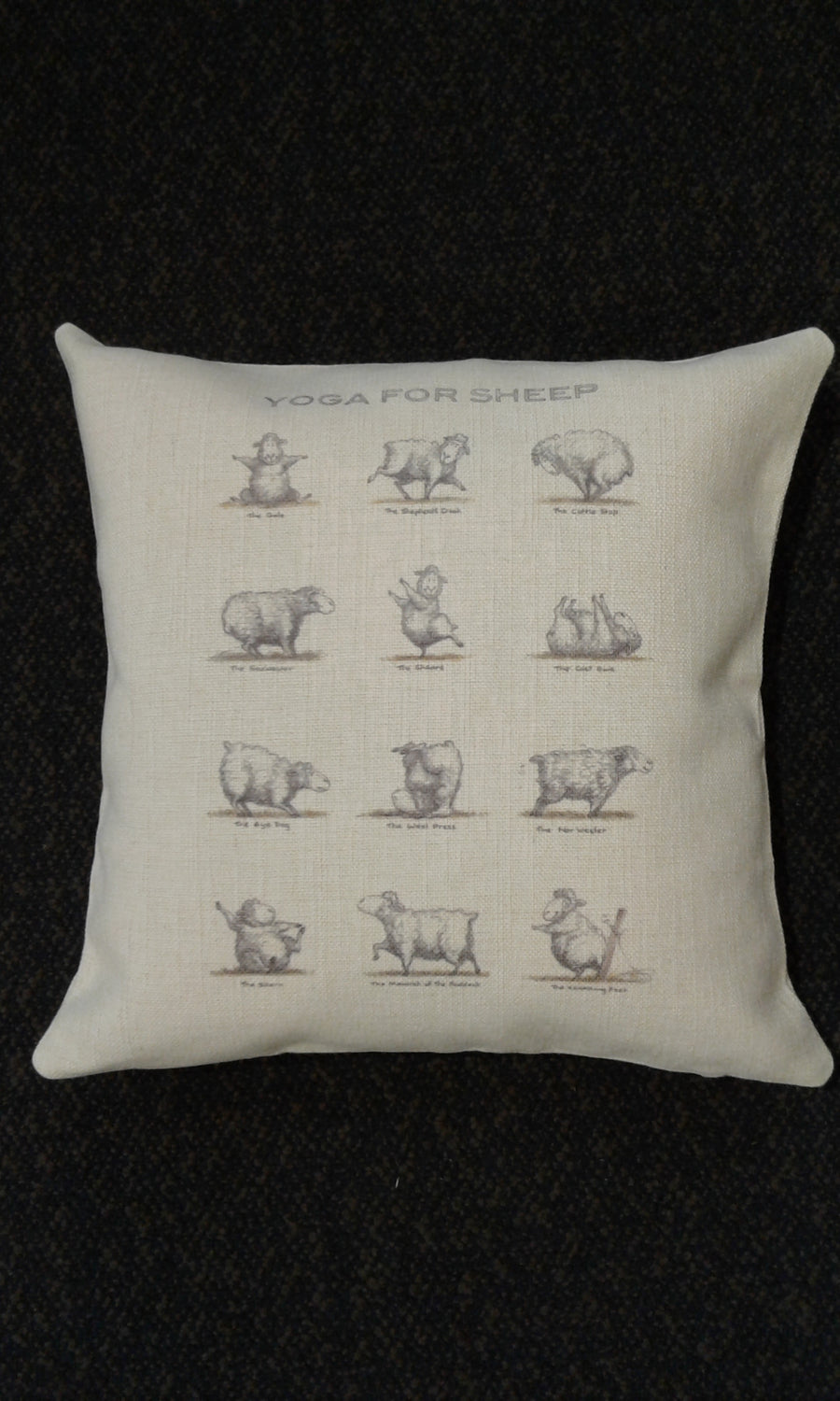 Cushions - Yoga for Sheep